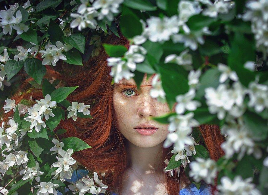 Obraz Anastacia Cooper z Pixabay